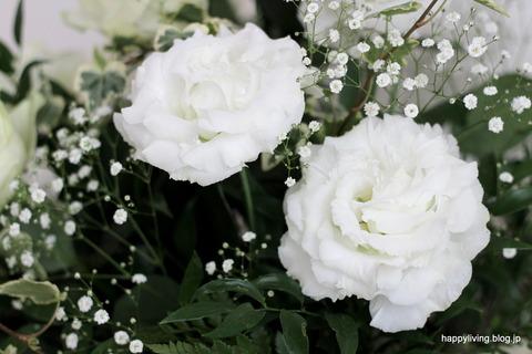 ホワイトインテリアに白い花 (2)