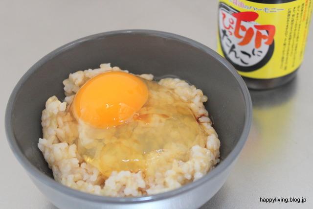 卵かけご飯 TKG からだ想いスプーン (4)