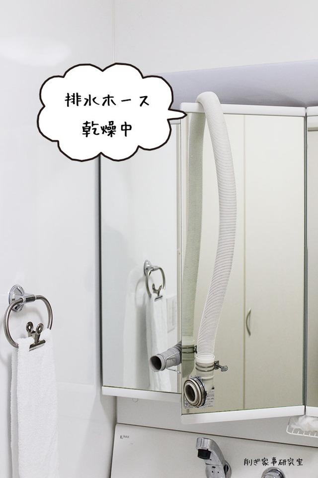 洗濯機 排水ホース 掃除 ホコリ防止 (1)