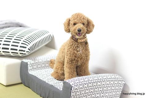 犬ベッド カバー artek 手作り モノトーン (8)
