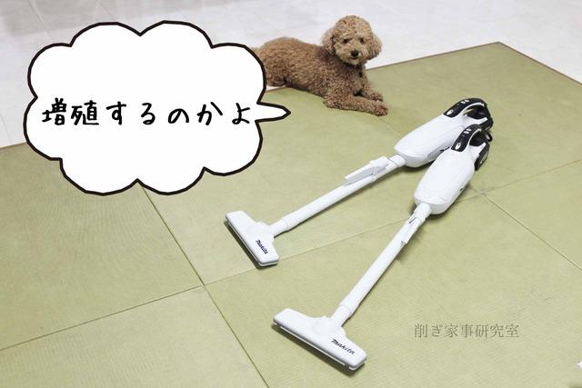 犬 掃除機 嫌い (3)