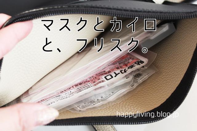 バッグの中身 整理収納 バッグインバッグ (7)