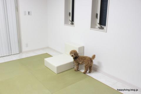 犬 階段 ベッド ソファ クッション ステップ (11)