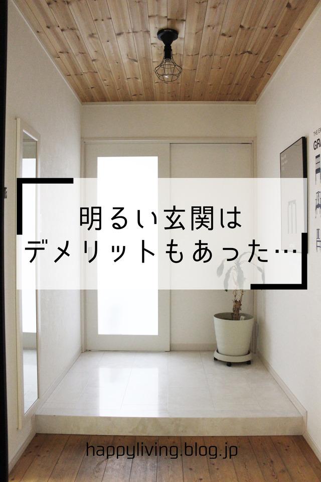 家づくり 失敗 明るい玄関 虫 白 (2)