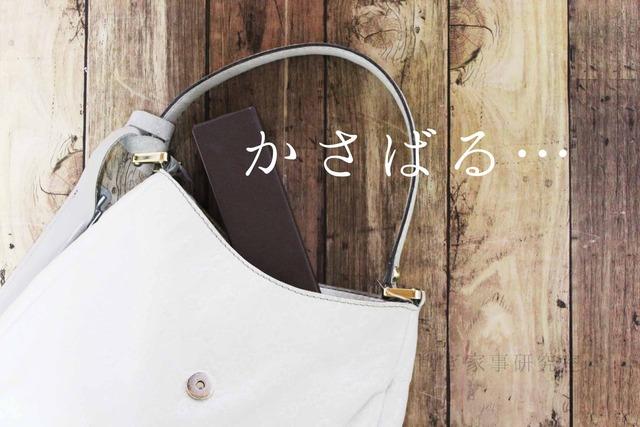 スリム コンパクト 眼鏡ケース 持ち歩き メガネ (1)