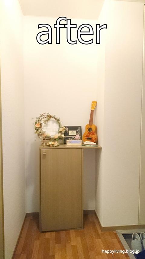 玄関 整理収納サービス 茨城 モニター 片付け (5)