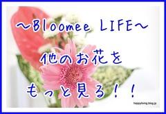 花 ブルーミーライフ Bloomee LIFE 500円 ポスト投函