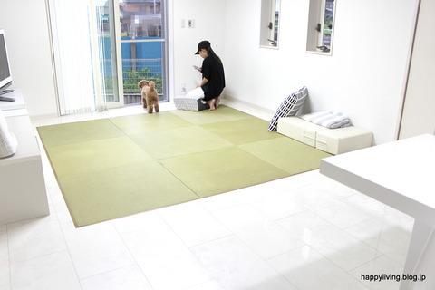 犬ベッド カバー artek 手作り モノトーン (11)