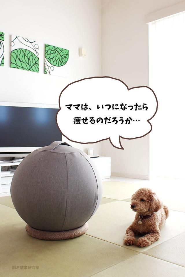 バランスボール おしゃれ 山善 インテリア (4)