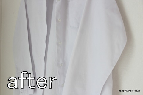 ティファール T-fal 衣類スチーマー (14)