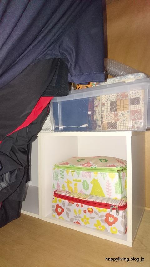 整理収納サービス 片付け 趣味 クローゼット 茨城 (12)