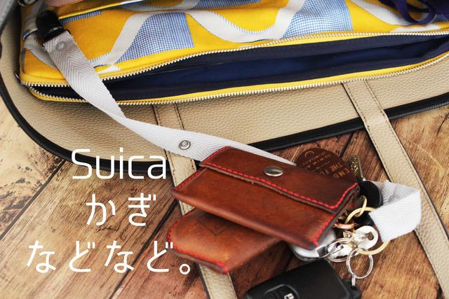 ハンカチ 鍵 Suica Pasumo バッグの中 整理整頓 (7)