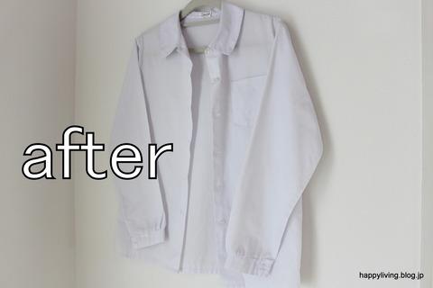 ティファール T-fal 衣類スチーマー (13)