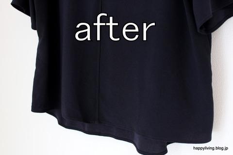 ティファール T-fal 衣類スチーマー (11)