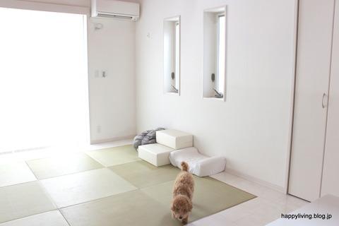 犬 階段 ベッド ソファ クッション (8)
