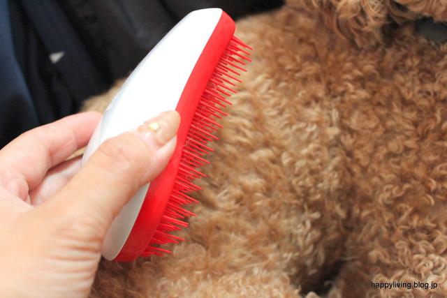 ヘアブラシ タンクルティーザー 犬 コストコ くせ毛 (8)