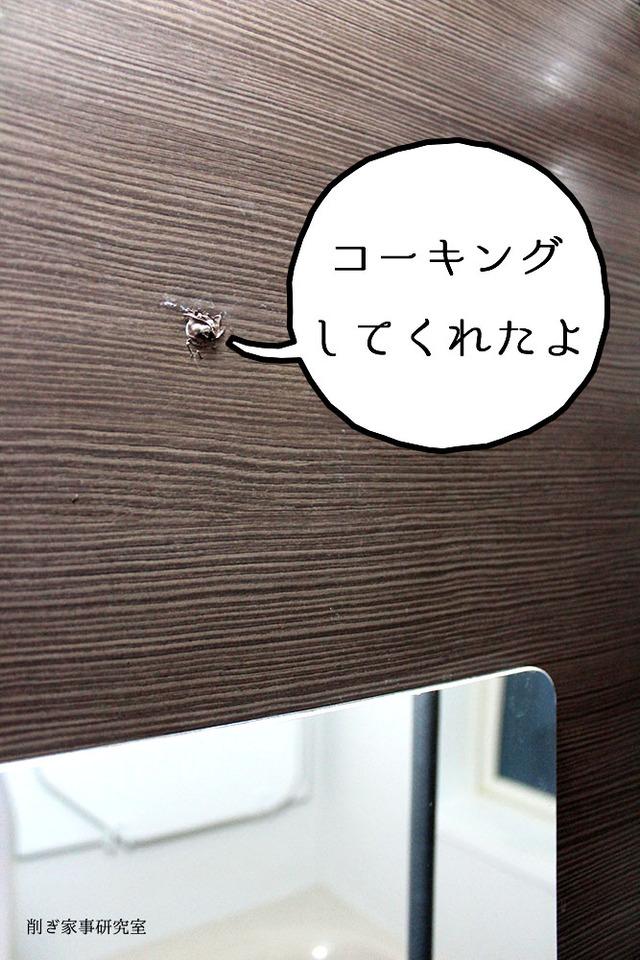 お風呂 タオルハンガー 外す 穴 (2)