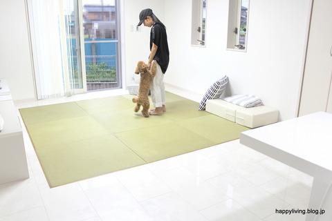 犬ベッド カバー artek 手作り モノトーン (7)