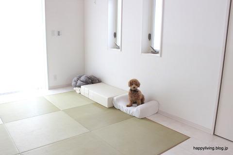 犬 階段 ベッド ソファ クッション (7)