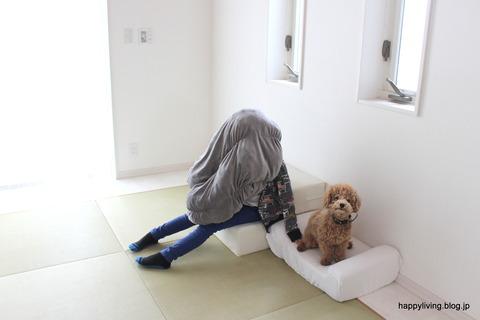 犬 階段 ベッド ソファ クッション (3)