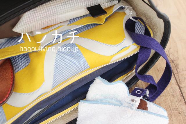 ハンカチ 鍵 Suica Pasumo バッグの中 整理整頓 (9)