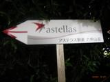 アステラス