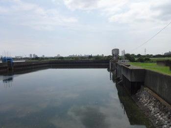 野鳥の楽園・千鳥橋付近から
