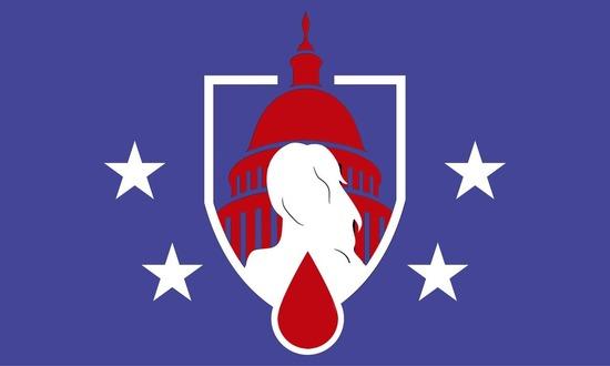 連邦議会3