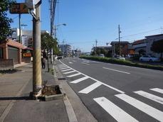 東京市川線