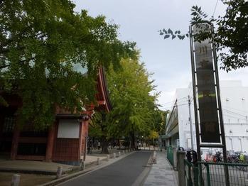 市民会館と葛飾八幡