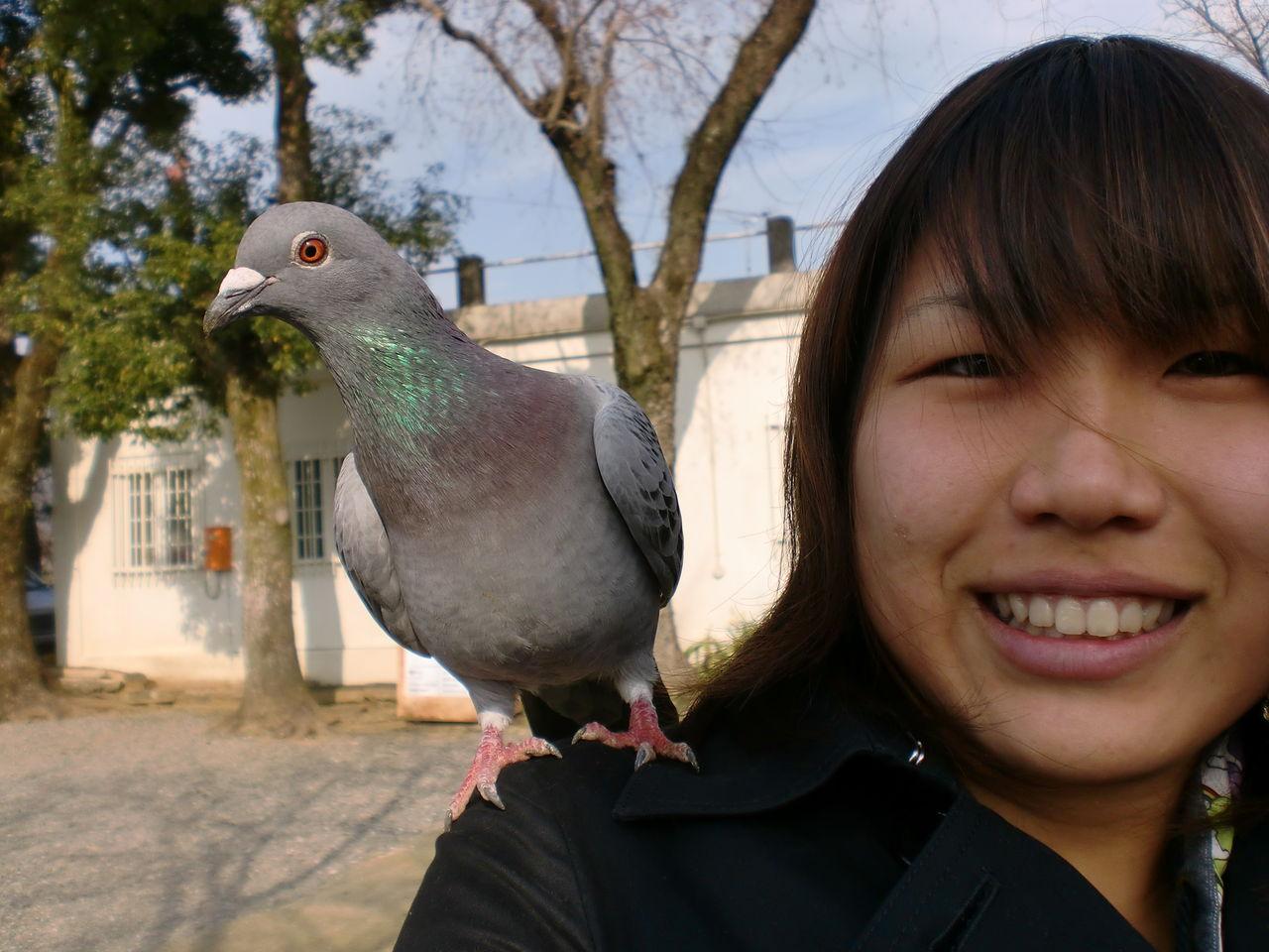 鳥見用・特殊用途双眼鏡談話室【5台目】fc2>1本 YouTube動画>3本 ->画像>277枚