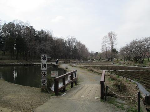 22丸山公園2