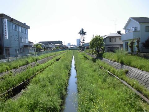 ④鎌倉橋2