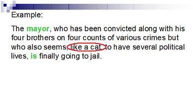 ネコは7回生きる???