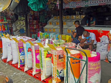 rice sac 5
