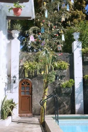 gala-rodriguez house 11