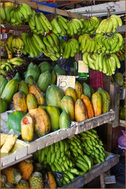 banana 05