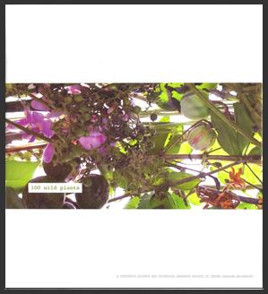BOOK WILD PLANT1