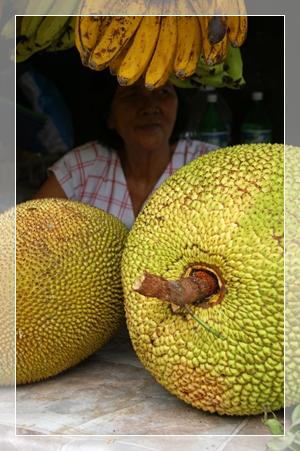 moalboal market 1