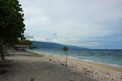 sumilon beach 6