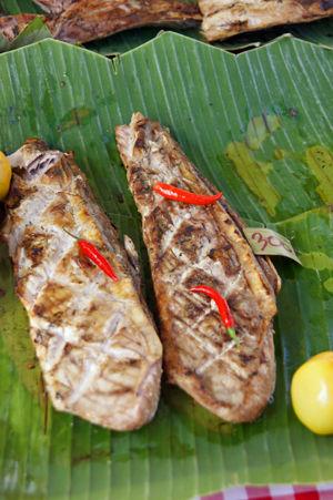 tuna bbq 3