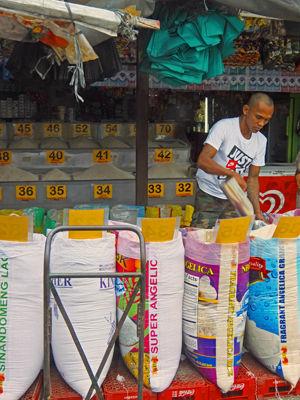rice sac 6