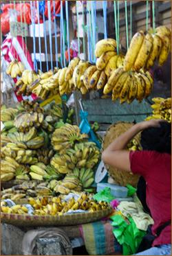 banana 04