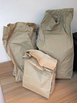 paperbag 2