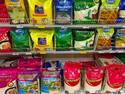 rice sac 10