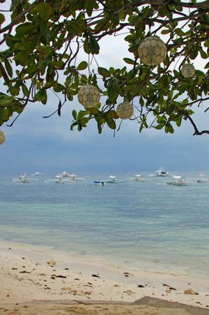 arona beach 9