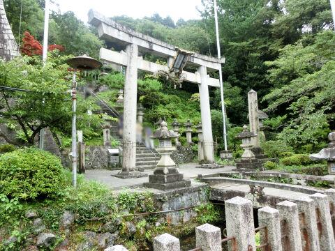 梅花藻神社