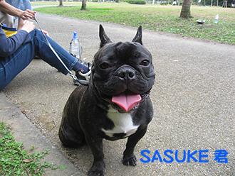 SASUKE��