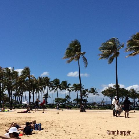 Hawaii Hilton lagoon 6