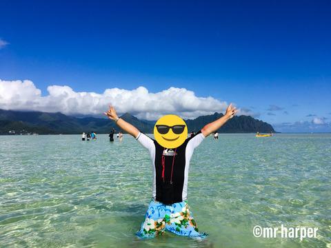 ハワイ 天国の海1